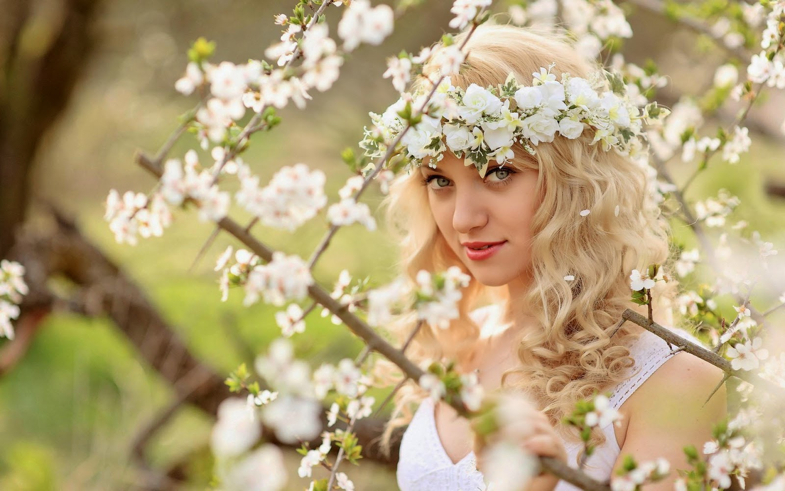 Beautiful natural flower beautiful nature beautiful natural flower izmirmasajfo