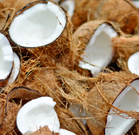 Everything You Need To Know About Coconut Oil – A Naturopath Explains