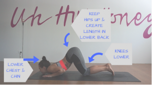 Knees-chest-chin sun salutation