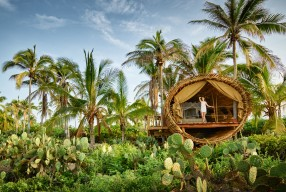 Playa Viva: The EcoTraveller & Yoga-Lover's Dream In Mexico