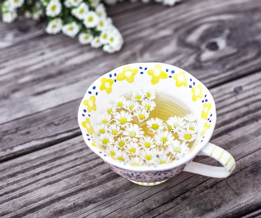 dandelion tea therapy healing